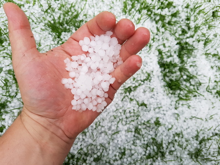 Hail on a hand after a storm