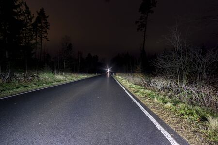 night road in the forest photo from the car