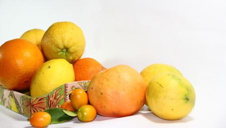 oranges grapefruits mandarins lemons and kunqua on white background