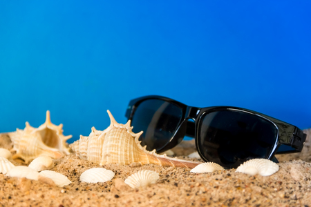 minimalist background representing the summer with snails clams goggles and sand on celestial