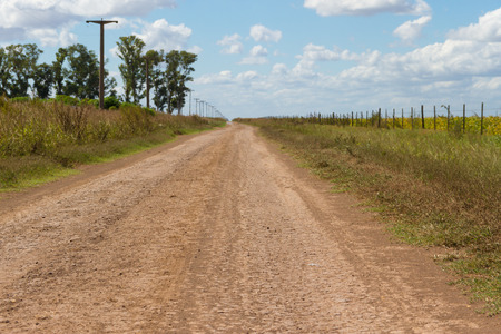 concept of distance with field road in the plain Stok Fotoğraf