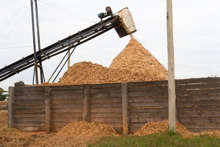 hopper forming a pile of sawdust in the wood industry Stok Fotoğraf