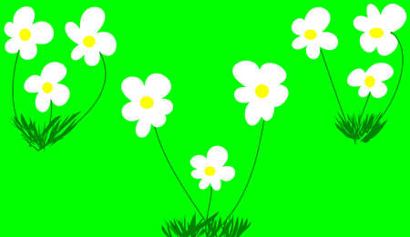 decore: flowers on green background