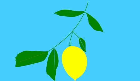 cidra: Citron sobre fondo azul