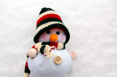 the snowman in the snow