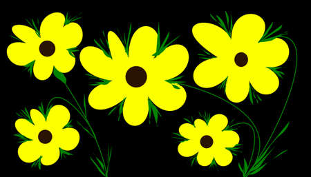 yellow flowers on black background