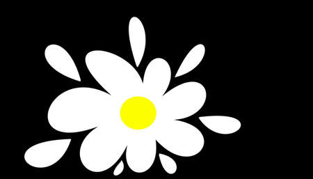 flower on black background