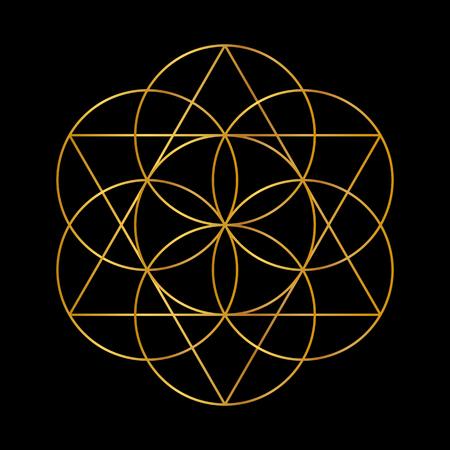 Flower of Life. Golden Vector Sacred Geometry isolated on black. Vettoriali