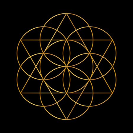 Flower of Life. Golden Vector Sacred Geometry isolated on black. Çizim