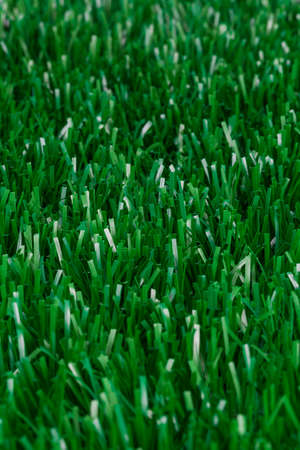 Macro photograph of turf plain photo