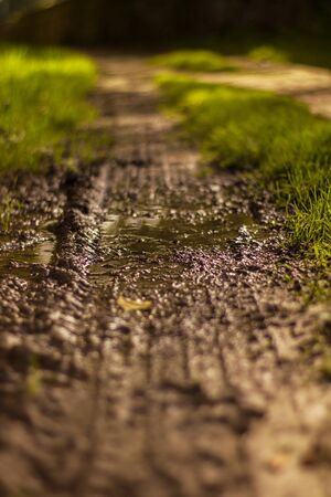 puddle in the mud of the road