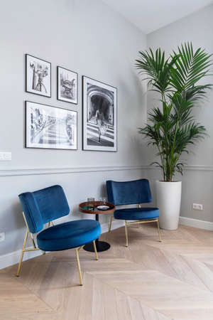 Budapest, Hungary - November 28, 2019: Conversation area with black and white pictures on the wall and a big green plant in a bright flat.