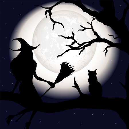 Silhouette of a witch with a broom and a cat Vector