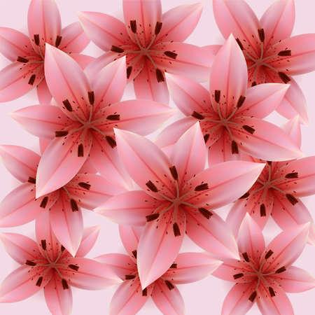 abloom: Lirios rosados