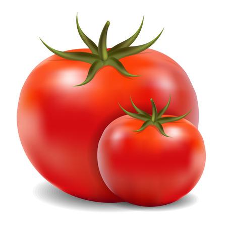 Dos tomates aislados en blanco