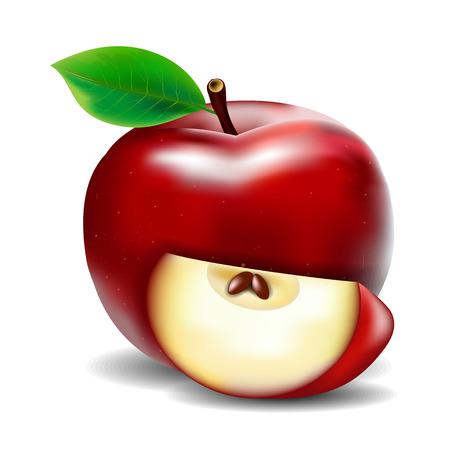 lobule: Apple