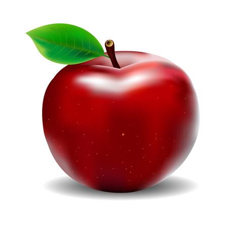 赤いリンゴ  イラスト・ベクター素材