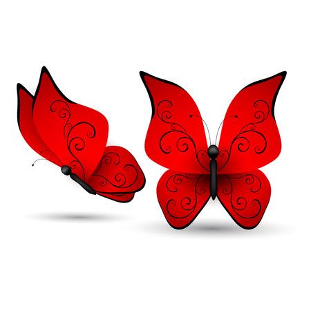 morpho: Set of butterflies