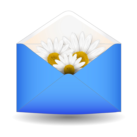 Open envelope with chamomile flower Vector