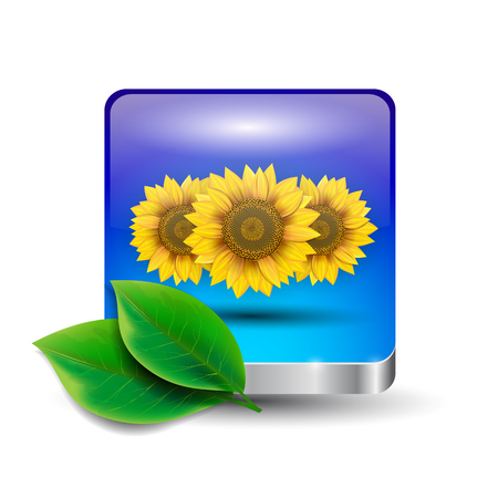 Flower button Vector