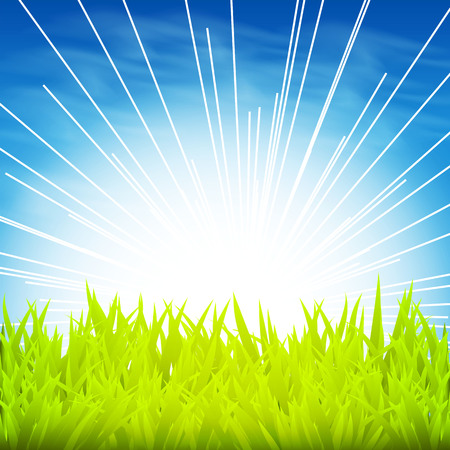 Green Background With sunrise Vector