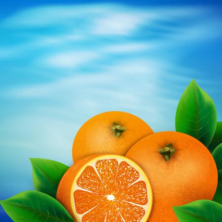 citrus tree: Background of oranges