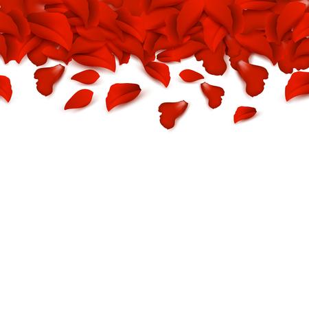 Border of rose petals