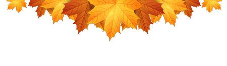 秋のモミジの境界線を残します。  イラスト・ベクター素材