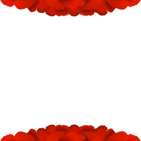 postcard background: Rose Petals Border on white background. Vector illustration.