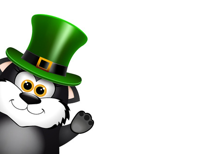 leprechaun hat: Black Cat in the Leprechaun hat. Saint Patricks Day card design. There is space for text. Vector illustration.
