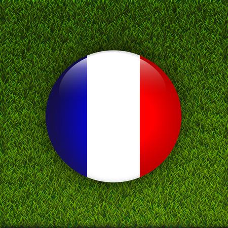 grass field: Flag of France on green grass field. Illustration