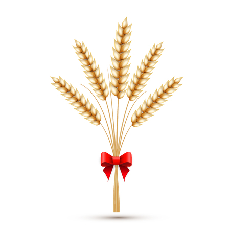 Ears of wheat with red bow