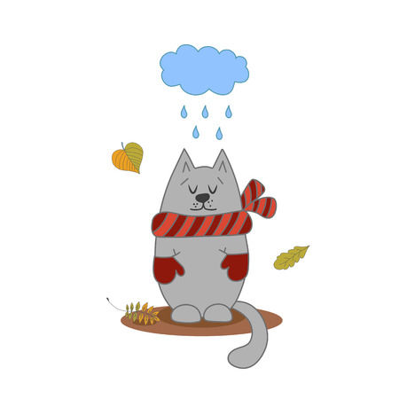 Cute cat autumn for invitation, greeting card design. Autumn background.
