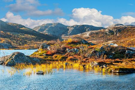 ocean plants: Beautiful mountain landscape in Norway