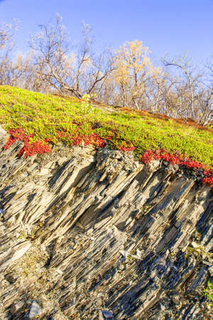 geological: Geological layer of Norwegian mountain