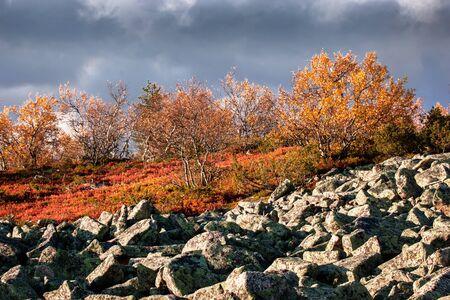 Lapland highlands in autumn photo