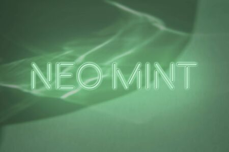 Trendy mint colored neon sign glowing lettering on abstract background with light and shadows caustic effect. Color trend concept.