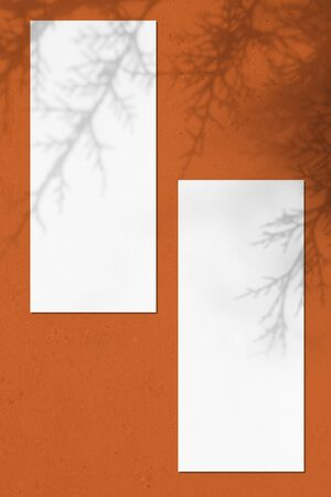 Two empty white vertical rectangle price-list or menu mockups with soft thuja leaves shadows lying on orange concrete background. Flat lay, top view, copy space.