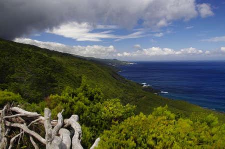 The coastline of Pico island, Azores
