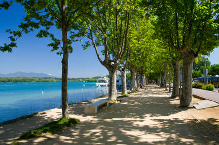 The alley of plane trees on the waterfront of Lake o Banyoles, Catalonia, Spain