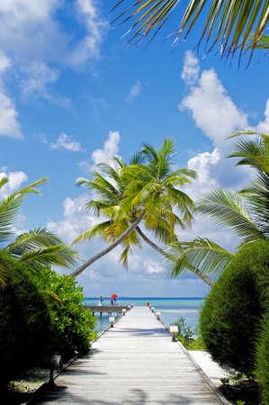 maldives island: The sunny tropical lagoon on Maldives island Stock Photo