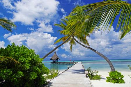 The sunny tropical lagoon on Maldives island photo