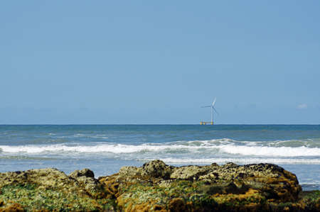 vicinity: Parque Natural do Litoral on the north of Portugal in the vicinity of the Esposende town.