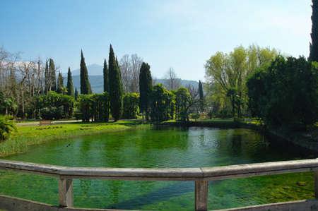 lago: Duck on Lago Di Garda, Italy. Stock Photo