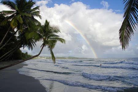 A rainbow above La Diamond beach, Martinique Island, Lesser Antilles Reklamní fotografie