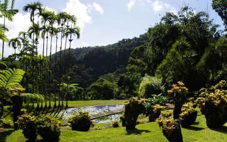 France, Martinique, the tropical  garden of Balata, Lesser Antilles