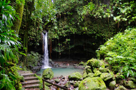 The Emerald Pool. Central Forest Reserve. Dominca island, Lesser Antilles 版權商用圖片