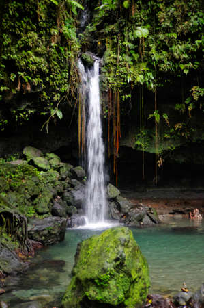 The Emerald Pool. Central Forest Reserve. Dominca island, Lesser Antilles Stock Photo