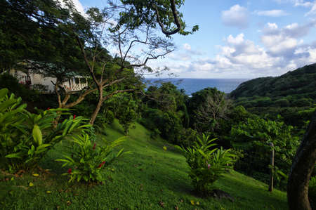 CASTLE BRUCE, DOMINICA - JANUARY 4, 2017 - The stylish cottage on west coast of Dominica island on January 4, 2017. Castle Bruce is village in west of Dominica island, Lesser Antilles