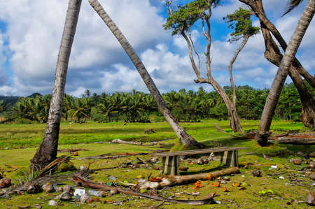 A bench on wild beach at Londonderry bay, Dominica island, Lesser Antilles Stock Photo